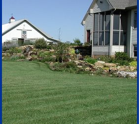Regular care and maintenance will yield a lawn that is lush and beautiful