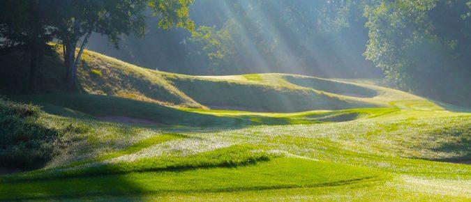 Managing Turfgrass Pests in Wisconsin