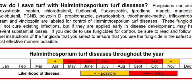 Helminthosporium Turf Diseases