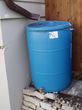 a simple rain barrel with intake from a downspout top a drainage spout