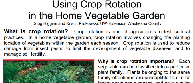 Using Crop Rotation in Home Vegetable Garden