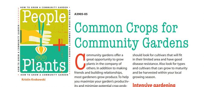 Common Crops for Community Gardens – People + Plants
