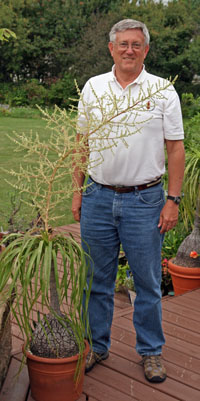 The author with his blooming plant