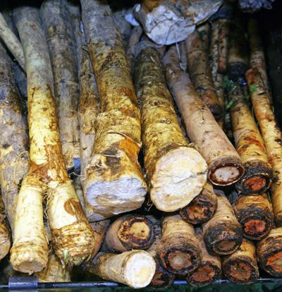 Horseradish roots.