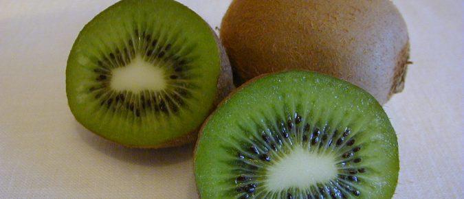Kiwifruit, Actinidia spp.