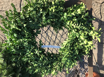 January 2021: Saying Bye-Bye to Boxwood Blight: Proper Disposable of Holiday Wreaths