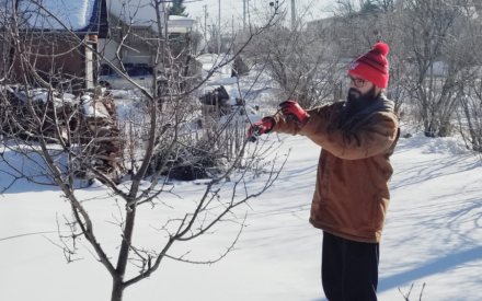 February 2021: Bypassing Plant Pathogens: Promoting Tree and Shrub Health Through Proper Pruning
