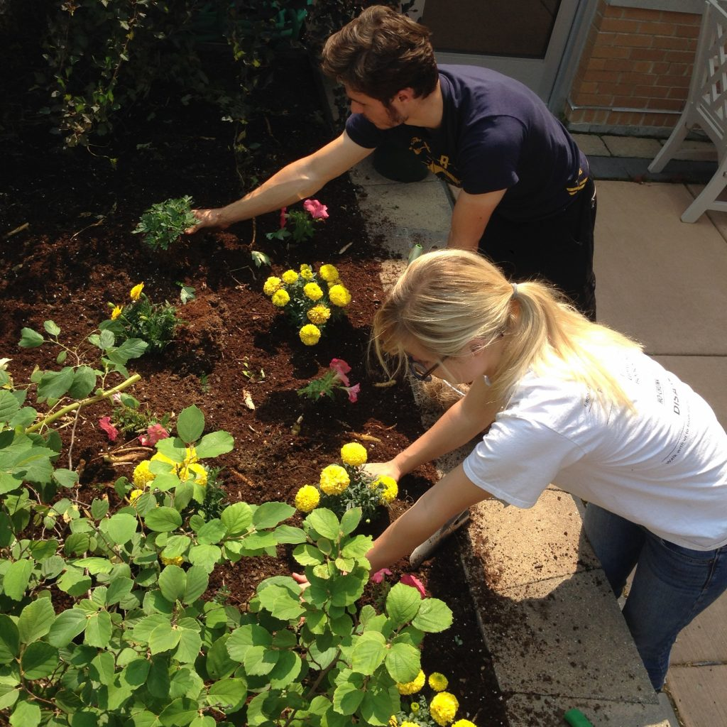 Young man and young woman planting marigolds